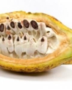 Kakao buter - Akcija